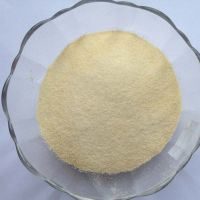 Best price Edible Gelatin Powder