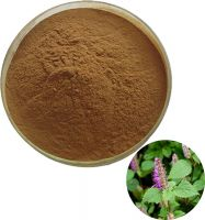Pure Natural Chinese Mosla Extract Powder