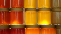 Bulk Raw Organic Honey
