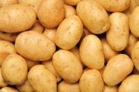 Fresh potatoes, sweet potatoes, irish potatoes, chips, flour, starch, cake