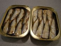 Canned Sardines fish, sea food, Canned Tuna, Tomato paste, Canned fruits, pineapples, canned corn,