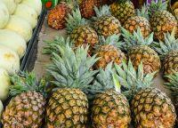 Pineapples, Peaches, Papaya, Pawpaw, Melons, Water Melon, Mangosteen, Mangoes, Pears, Kiwi, Guavas, Grapes, Durian, Dragon fruits, Olives, banana, Papaya, avocado, oranges, apples, Lemon, Oranges, Limes, Citrus, pineapples, Cherries, Berries, Apricots, Pl