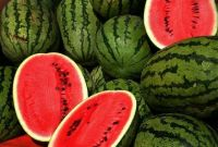 Fresh Sweet Watermelons From South Africa