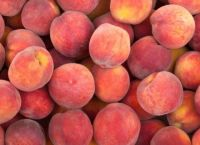 Premium Quality Fresh Peaches for Sale