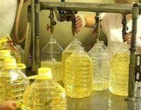 Organic Camellia Seed Oil