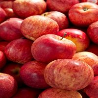 Red Delicious Gala Apples