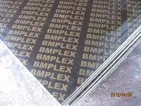Film faced plywood/Shuttering plywood/construction plywood