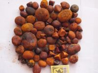 High Quality Standard Cow Gallstones