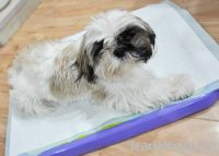 Sell disposable underpads, pet underpads, puppy pads, pet pads