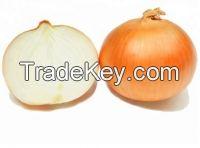 natural/cheap/high quality fresh yellow onion