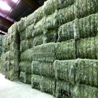 Alfalfa Hay & Alfalfa Pellets Animal Feed