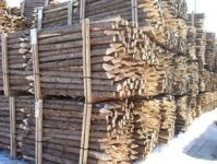 Canadian Northern White Cedar logs and posts with Bark
