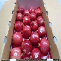 Selling Natural Fresh Pomegranate Price