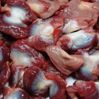 Best Quality Frozen Chicken Gizzards For Sale