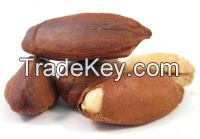 High Quality Pili Nuts