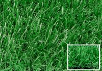 The popular artificial glass/turf
