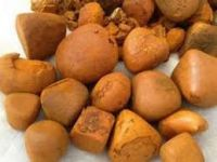 Dried Natural Ox/Cow Gallstone