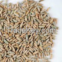100% Natural Rye Grain