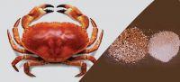 Crab Shell Powder, Crab Shell, Animal Feed
