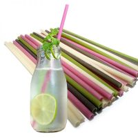 Offer Of Drinking Straws From Rice Flour/ Rice Straws - Compostable Plant-Based Straws