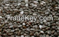 Chia seeds conventional for sale