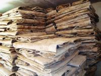 Best Grade Donkey hides / Wet salted Donkey / Cow Skin / Dry salted Cow hides..