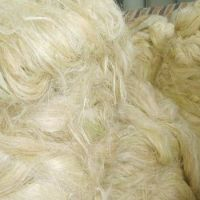 Cheap Sisal Fibre of UG grade and SSUG for sale