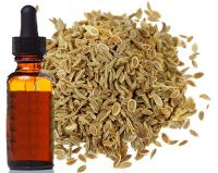 Hot Sale Natural Celery seed Essential oil wholesale with free sample