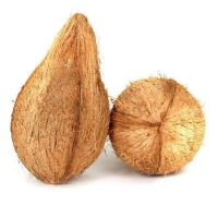 Semi Husked Mature Coconut, Cheap Price and Great Quality Coconut