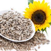 High Quality 100% Sunflower Seeds