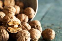 Walnut & Walnut Kernel For Sale/New Crop Wholesale Walnut Kernel