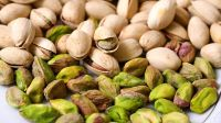 Best Quality Pistachios Nuts / Raw And Roasted