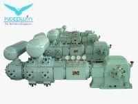 High Pressure CO2 Carbon Dioxide Diaphragm Compressor China Experience Manufacture
