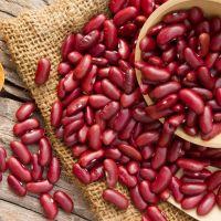 A Grade Fresh Crop Premium Quality Dried Dark Red Kidney Beans for sale