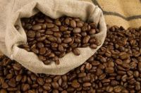 Green Coffee Beans Arabica Grade AA and Robusta and Civet Coffee
