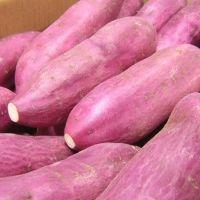 Fresh Sweet Potatoes Good Quality