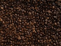 Quality Arabica and Robusta Coffee Beans