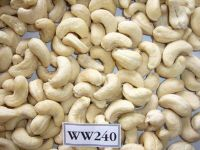 CASHEW NUTS/ CASHEW KERNELS WW240/ WW320/ WW450/ WS/ LP/ SP