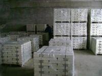 Pure Magnesium Ingot 99.90% in Cheap Price