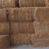 Wholesale Good Quality brown Palm coconut fiber