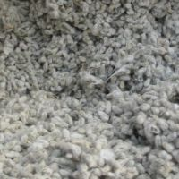 Quality Grade A Cotton Seeds