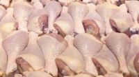 Grade A Frozen Whole Chicken - Halal Whole Frozen  Chicken - Feet - Drumsticks and Other Parts