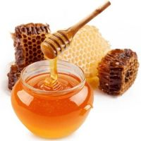 High Quality Export 100% Pure Natural Bee Honey Price