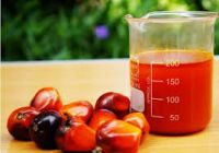 Hydrogenated Oil - Palm oil From South African Factory