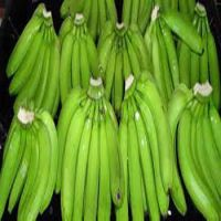 Wholesale price, fesh Cavendish Banana from Afica