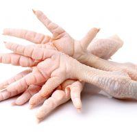 Grade A Halal Frozen Chicken Feet, Paws.