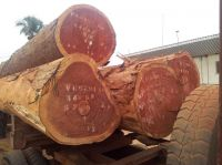 African Round Logs, Tropical Wood