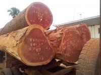 Teak, Tali, Padouk, Bubinga, Doussie And Other African Woods Available