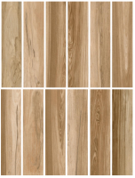 Porcelain tile - AMAZONIA - Glazed (12 Faces)