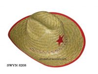 Natural Cowboy Hat, Cowboy Hat Vietnam, Cowboy Hat for Promotion